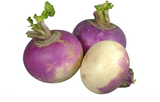 Turnip is one of the best weight loss foods